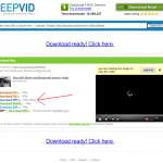 KeepVid.com's Download Page